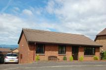 Detached Bungalow for sale in Easton Drive, SHIELDHILL...
