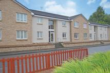 2 Thornbridge Court Ground Flat to rent