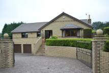 Detached Villa for sale in Bellsdyke Road, LARBERT...