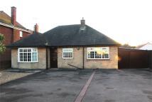 3 bedroom Detached Bungalow in Nuneaton Road...