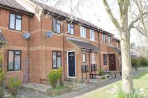 Wickfield Terraced property to rent
