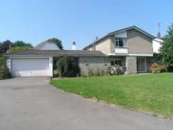Detached house to rent in Greenmeadow, Penllyn...