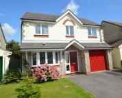 Detached house to rent in 25 Cwrt Syr Dafydd...