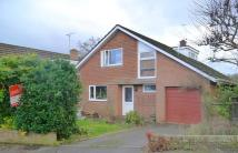 3 bed Detached Bungalow for sale in Blandford