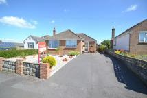 Detached Bungalow for sale in Charlton Marshall