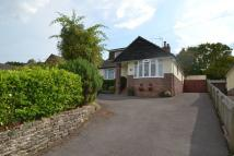 2 bedroom Detached Bungalow in Charlton Marshall