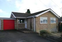 Detached Bungalow for sale in Pimperne