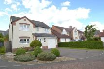 4 bed Detached property for sale in Blandford