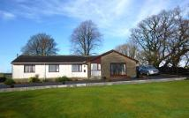 4 bed Detached Bungalow in Glenwhern, Nith Bridge...