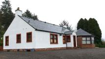 4 bed Detached Bungalow for sale in The Old Nursery...