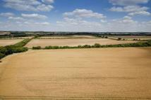Brown Candover Farm Land for sale