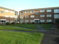 Gaywood Court Apartment to rent