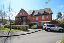 3 bed house to rent in Henderson Avenue...