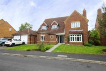 4 bedroom Detached property to rent in Nunthorpe Gardens...