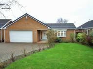 3 bed Detached Bungalow to rent in Boston Drive, Marton