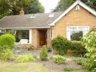 Detached Bungalow for sale in Arno Road, CH43
