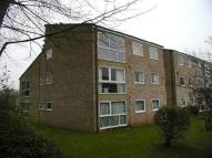 Flat to rent in NORTH OXFORD
