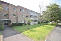 Flat to rent in SUMMERTOWN, OXFORD
