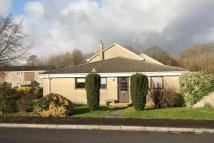 2 bed Semi-Detached Bungalow in Ashwood Road, Rudloe...