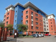 Millsands Apartment to rent