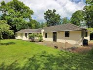 5 bed Detached Bungalow for sale in Lake View Road...