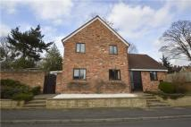 4 bedroom Detached property to rent in Woodcote, Maidenhead...