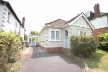 Detached Bungalow to rent in Bullfinch Lane...