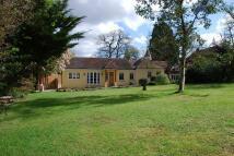 Detached house to rent in Gracious Lane, Sevenoaks...