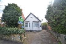 Bungalow to rent in Boughton Green Road...