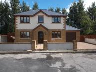 Detached house in Siloam Close, Nantybwch...