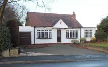 3 bed Detached Bungalow to rent in Dog Kennel Lane, Shirley