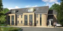 Primrose Lodge Studio flat to rent