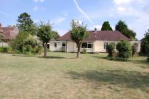Detached property to rent in Days Lane, Biddenham...