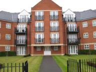 Flat to rent in Palgrave Road...