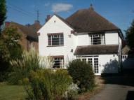 Detached house to rent in Kimbolton Road, Bedford...