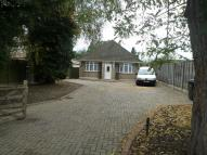 Detached Bungalow to rent in Theobalds Park Road...