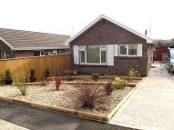 Detached Bungalow in Springfield Gardens...