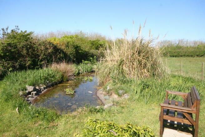 Further Pond Area