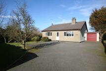 3 bed Detached Bungalow in Caergeiliog, Anglesey