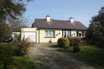 Bungalow in Bodedern, Anglesey