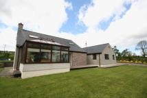 4 bedroom Bungalow for sale in Rhoscefnhir, Anglesey