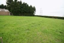 Land in Rhosgoch, Anglesey