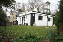 property to rent in Llys Dulas, Anglesey
