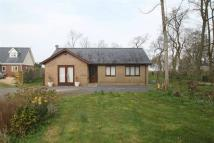 3 bedroom Detached Bungalow in Llanfaelog, Anglesey