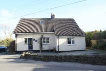 2 bed Detached Bungalow to rent in Llanddaniel Fab, Gaerwen