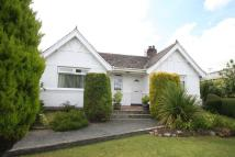 Llangefni Detached Bungalow for sale