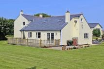 Detached property to rent in Mynydd Mechell, Anglesey