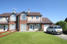 semi detached property for sale in Llangefni, Anglesey