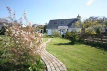 Carreglefn Detached house for sale
