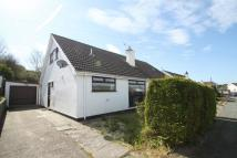 3 bedroom Detached Bungalow to rent in Penlon, Menai Bridge